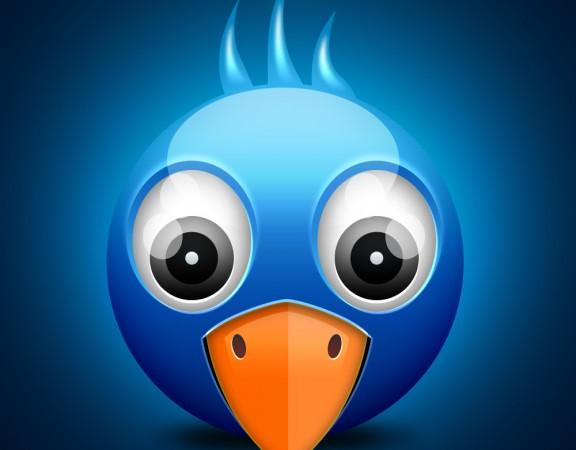 twitter-birdie-icon-banner724.ir_